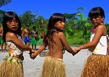 Santos Shore Excursion: Full Day Rain Forest and Indian Reservation Experience,