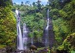 Excursión de senderismo privada a la cascada Sekumpul. Seminyak, INDONESIA