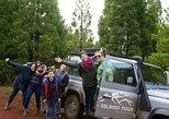 Excursión de medio día a la isla de Terceira en vehículo 4x4. Terceira, PORTUGAL