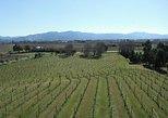 Picton Shore Excursion: Marlborough Wine Region Tour. Picton, New Zealand