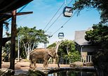 Sydney Taronga Zoo Tickets: Behind-the-Scenes Access. Sidney, AUSTRALIA