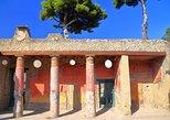Recorrido privado a pie con arqueólogo a Pompeya y Herculano. Pompeya, ITALIA