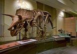 Canadian Museum of Nature Admission. Ottawa, CANADA