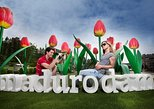 The Hague: Keukenhof Guided Tour plus Visit to Madurodam,