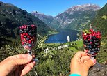 Geiranger by Royal route, 5 hours with visiting a high-mountain farm. Andalsnes, NORWAY