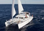 Mykonos Catamaran Day & Sunset Cruises with meals Drinks and transportation. Miconos, Greece