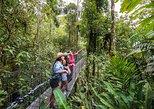 Recorrido guiado por los puentes colgantes de Parque Místico. La Fortuna, COSTA RICA