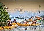 Bio Bay Night Kayaking 7:30pm | Laguna Grande, Fajardo. Fajardo, PUERTO RICO