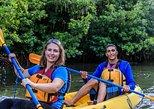 Bioluminescent Bay Night Kayaking Tour 5:30pm | Laguna Grande, Fajardo. Fajardo, PUERTO RICO