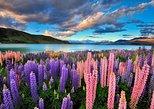 Gran recorrido circular de cuatro días por la Isla Sur desde Christchurch. Christchurch, NUEVA ZELANDIA