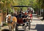 Recorrido en carruaje por la zona residencial histórica de Charleston. Charleston, SC, ESTADOS UNIDOS
