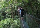 Excursión por puentes colgantes en 100% Aventura Park. Monteverde, COSTA RICA