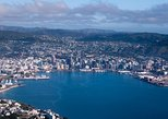 Excursión por la costa de Wellington: Recorrido turístico de la ciudad. Wellington, NUEVA ZELANDIA