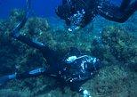 Scuba Diving Courses, ,