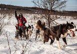 Tromso: Husky Sledding Self-Drive Adventure. Tromso, NORWAY