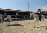 Paseo a caballo en Salou. Tarragona, ESPAÑA