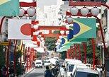 Tour privado - Las principales atracciones turísticas de São Paulo - 8 horas (recogida en Santos). Santos, BRASIL