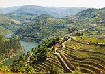 Douro Valley Full-Day Tour with Lunch and Wine Tasting from Braga. Braga, PORTUGAL