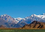 Private excursion to the Uco Valley from Mendoza, with lunch and wine tasting included, Mendoza, ARGENTINA