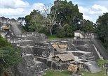 Tikal Day Tour. Flores, Guatemala