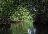 Negombo Lagoon Tour. Negombo, Sri Lanka