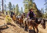 Ruby's Horseback Adventures Utah Thunder Mt. 4 Hour Ride, ,
