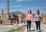 Escapada privada de un día a Pompeya y Herculano con entradas. Pompeya, ITALIA