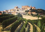 Truffle hunt and Barolo wine tasting. Langhe-Roero y Monferrato, ITALY