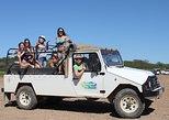 Medio día, Algarve, campo y pueblos, Jeep Safari.. Albufeira, PORTUGAL