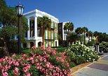 Excursión turística por la ciudad de Charleston en minibús (excursión para grupos pequeños). Charleston, SC, ESTADOS UNIDOS