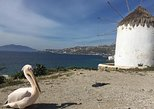 Private Tour: Mykonos Island in Half a Day. Miconos, Greece