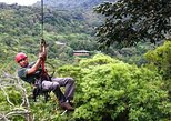 Monteverde Rainforest Canopy Tour with Ziplines and Rappelling. Puntarenas, COSTA RICA