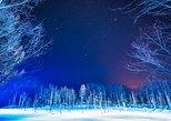 Asahiyama Zoo, Fascinating Aoi-Ike Light Up and Shirohige Falls in Winter!. Sapporo, JAPAN