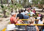 Río Safari Elche con transporte desde Benidorm. Benidorm, ESPAÑA