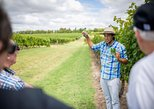 Montevideo and Wine Tasting Tour - for cruise passengers. Montevideo, Uruguay