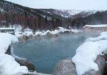 Excursión nocturna para ver la aurora boreal y visitar Chena Hot Springs desde Fairbanks, Fairbanks, AK, ESTADOS UNIDOS