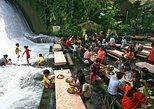 Villa Escudero Tour with Lunch, Raft, Cart Ride, Manila Pickup. Manila, PHILIPPINES