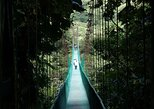 Monteverde Sky Walk From Guanacaste, Playa Hermosa, COSTA RICA