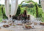 Romantic Vineyard Dinner Experience in Tuscany. San Gimignano, ITALY