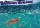 Cruise to turtle's island and caves with a glass bottom boat. Zante, Greece