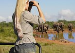 Garden Route 5-Day Tour: Addo Park, Jeffreys Bay, Oudtshoorn. Ciudad del Cabo, South Africa