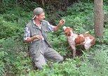 Truffle hunt and food tasting. Langhe-Roero y Monferrato, ITALY