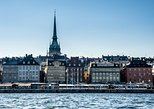 Private Car Tour of Stockholm with a Live guide, including the Vasa museum.,