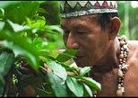 Comunidad nativa de Iquitos. Iquitos, PERU