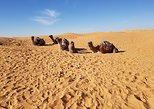 Tatouine - Chenenni - Ksar Ghuilaine - Matmata: 2 days visit, Yerba, TUNEZ