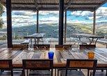 Excursão privada: Experiência de degustação de vinhos em Montalcino. Arezzo, Itália