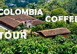 Colombia Coffee Tour - Half day tour | From the seed to the cup!. Medellin, COLOMBIA
