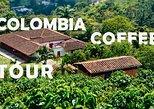 Recorrido sobre el café de Colombia: Recorrido de medio día | De la semilla a la taza. Medellin, COLOMBIA