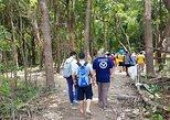 5 Days Amazon Jungle Adventure Tour, Manaus, BRAZIL