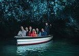 Excursão particular: Viagem diurna às Cavernas de Waitomo, saindo de Auckland, Auckland, NOVA ZELÂNDIA